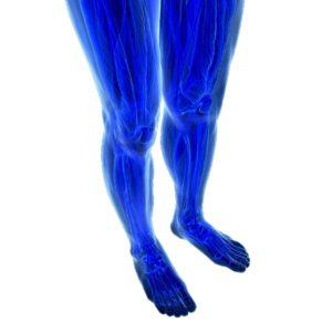 Human feet under X-rays isolated on black.